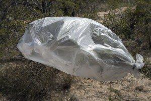 Transpiration Bag - Desert Survival