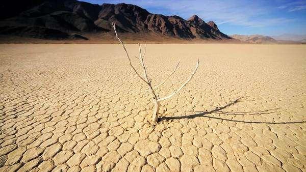 Waterless Desert